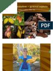 Cacao Fermentation