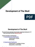 Development of the Skull E-learning