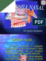 Anatomia de La Nariz y Senos ales