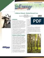 Cellulosic Ethanol-Biofuels Beyond Corn