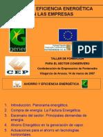 Ahorro y Eficiencia Energetic A en Las Empresas