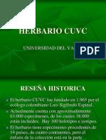 HERBARIO CUVC