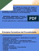 Principios Formativos Del Procedimiento.mvc