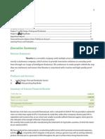 Company Report 2