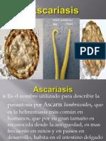 ascariasis termiada