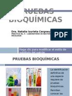 laboratoriono-5-pruebasbioqumicas-110529225758-phpapp02