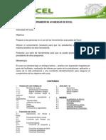 Programa de Excel Avanzado 2012