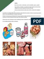 Grupo de Alimentos de Origen Animal