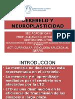 CEREBELO Y NEUROPLASTICIDAD