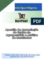 apostila_de_custos