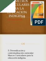 Para Metros Curricula Re Spar A La Educacion Indigena