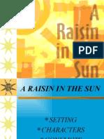 A_raisin_..
