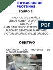 IDENTIFICACION_DE_PROTEINAS[1]