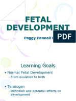 fetal monitoring pdf childbirth caesarean section