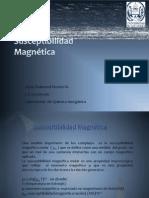 Seminario susceptibilidad magnetica