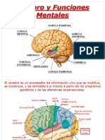 Cerebro y Funciones Mentales