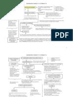 SOCIOLOGA UNLaM (Cuadros Sinpticos Unidad 3 y 4) PDF