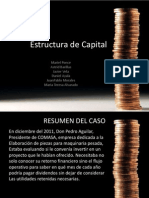 Resumen Estructura Capital