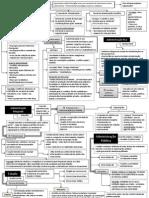 Teorias da Administração Pública - Resumão para Decoreba