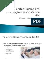 Cambios biológicos, psicológicos y sociales del AM