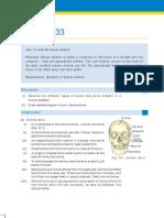 To Study the Human Skeleton