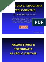 Arquitetura Dos Dentes