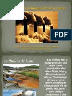 Les problemes ecologiques