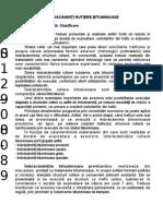 mixturi_asfaltice_proiect