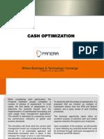 FANERA LTD Cash Optimization