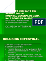 oclusionintestinal