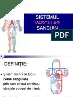 histologie-lp-1