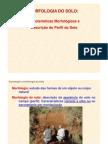 5 Morfologia Solo