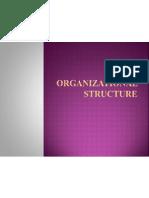 16465 Organizational Structure(2)