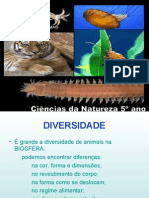 Power Point Diversidade 1193002199271710 5