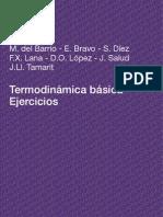 Termodinamica Basica