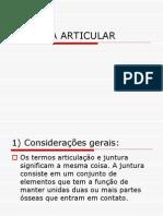Sistema Articular 02