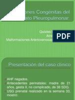 Expo Malformaciones Pulmonares (Jeral)