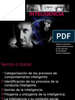 Inteligencia Final