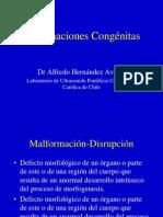 Malformaciones Congenitas