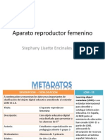 Ava Aparato Re Product Or Femenino