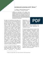 Delprato-Skinner Supuestos básicos