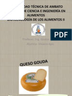 QUESO_GOUDA