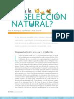 SeleccionNatural