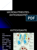 seminario micronutrientes