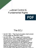 Judicial Control Fundamental Rights