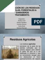 CLASIFICACIÓN DE LOS RESIDUOS AGRICOLAS