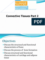 L8 II Connective Tissue Part 2