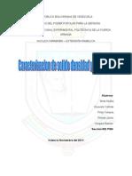 Informe de Caracterizacion de Solidos Densidad y Porosidad
