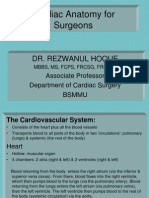 Cardiac Anatomy for Surgeons