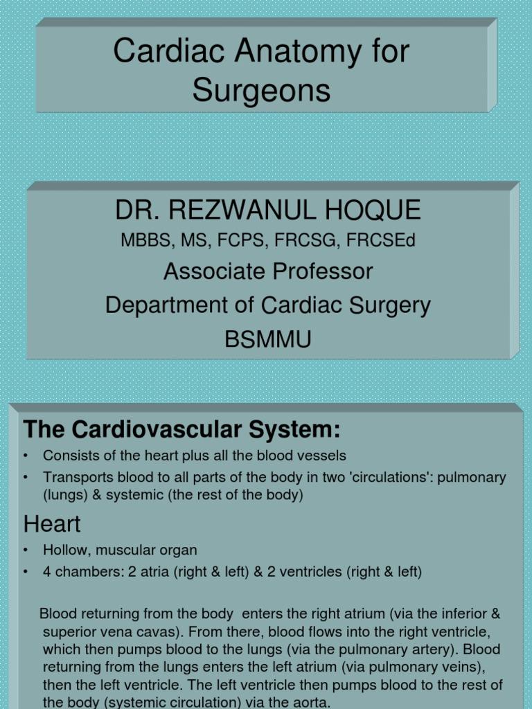 Cardiac Anatomy For Surgeons Heart Valve Heart
